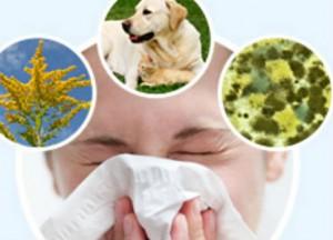 Allergies 03
